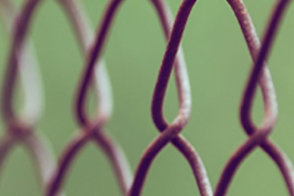 Faithful in Captivity
