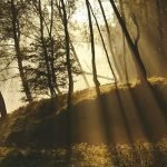 The Call Of Christian Faith