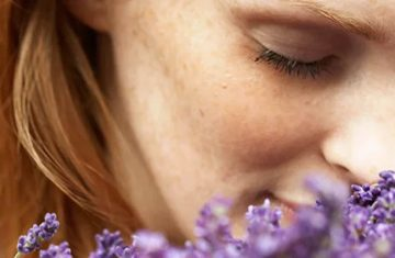 Ome Women Without Olfactory Bulbs Can Still Smell—how