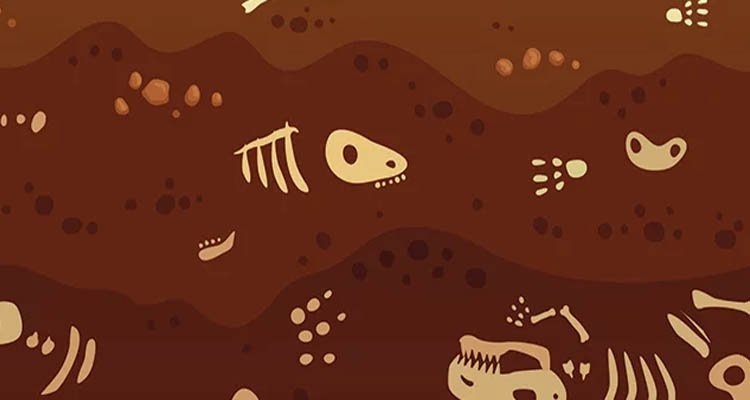 Biological Remnants In Fossils—they're Common