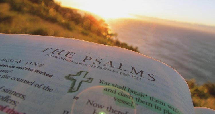 The Psalms Are For You Right Now