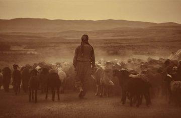 God, The Shepherd