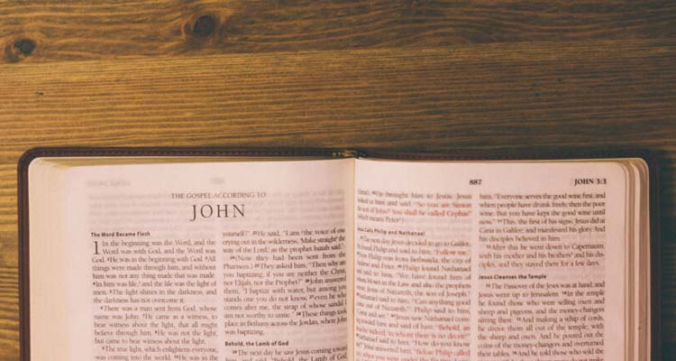 explore the gospel of john
