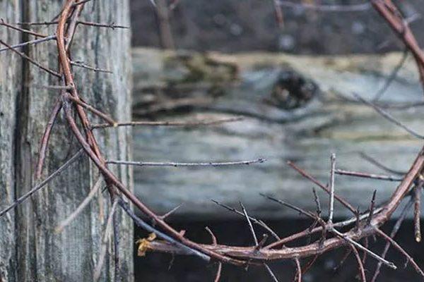 looking to jesus
